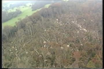 play video for Bromley Storm Damage